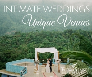 Intimate Weddings & Unique Venues Destination Weddings & Honeymoons in Ecuador & the Galapagos Islands by Terrasenses & Etica Events (Cloud Forest Wedding - photo credit Greg Finck)