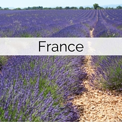 Information on getting married in France