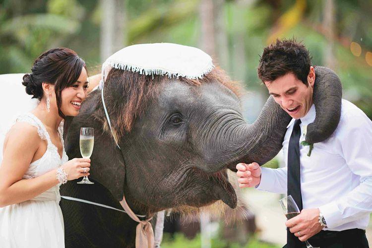 Craig & Deanne's Beach Wedding in Thailand read their story here // Creative Events Asia // Aidan Dockery Photography // Merlin Beach Resort